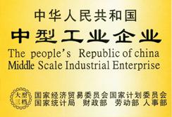 中型工业企业
